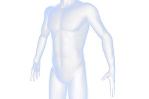Biotherapy(生物学的機能療法)